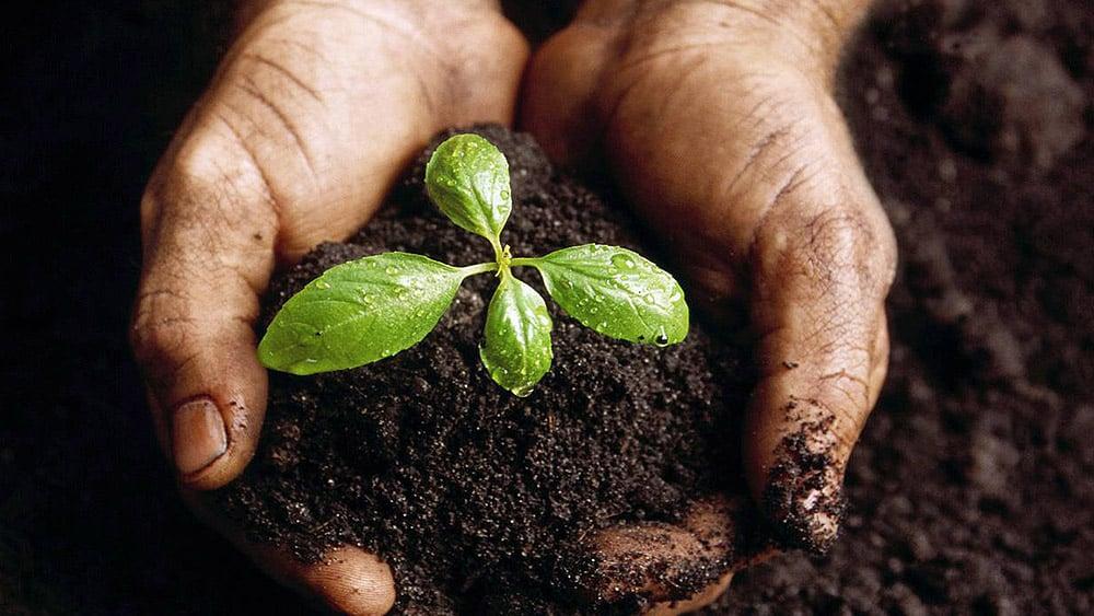 évaluer la mise en oeuvre - croissance