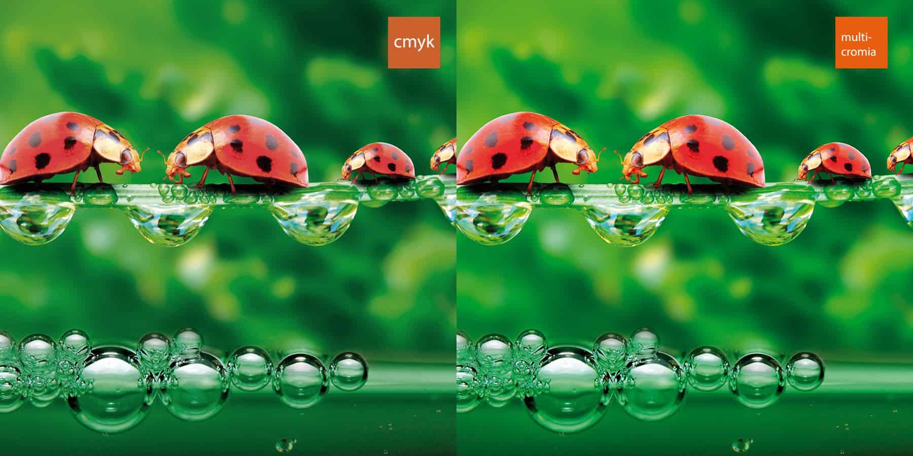 post-design-founders-cmjn-vs-rvb