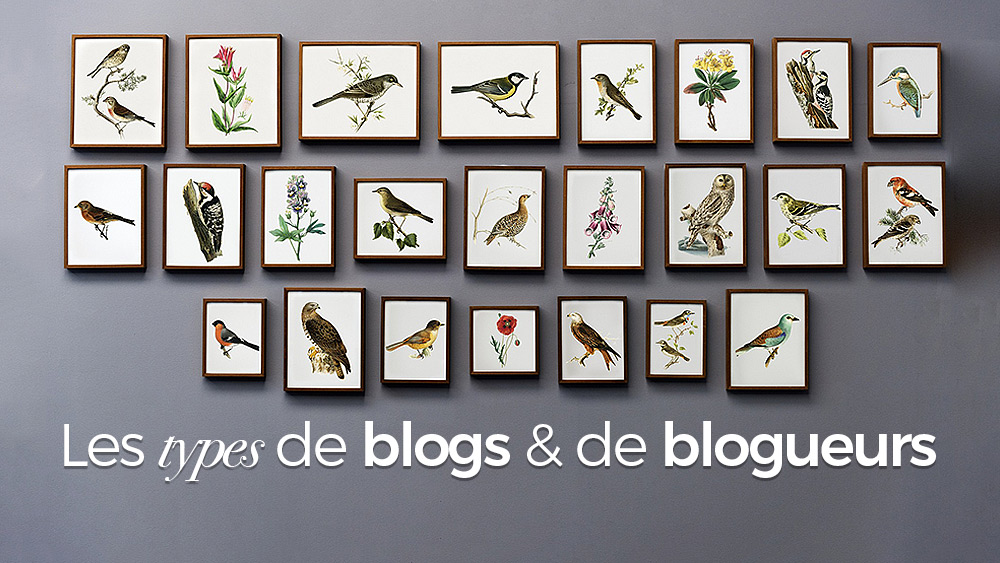types-blogs-blogueurs