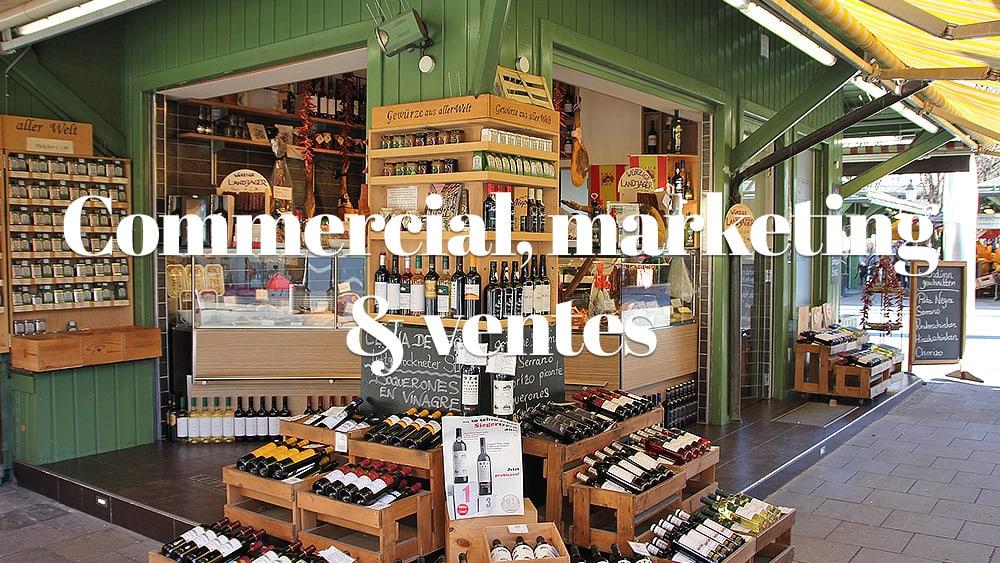 Commercial, marketing et ventes : comment ça s'organise ?