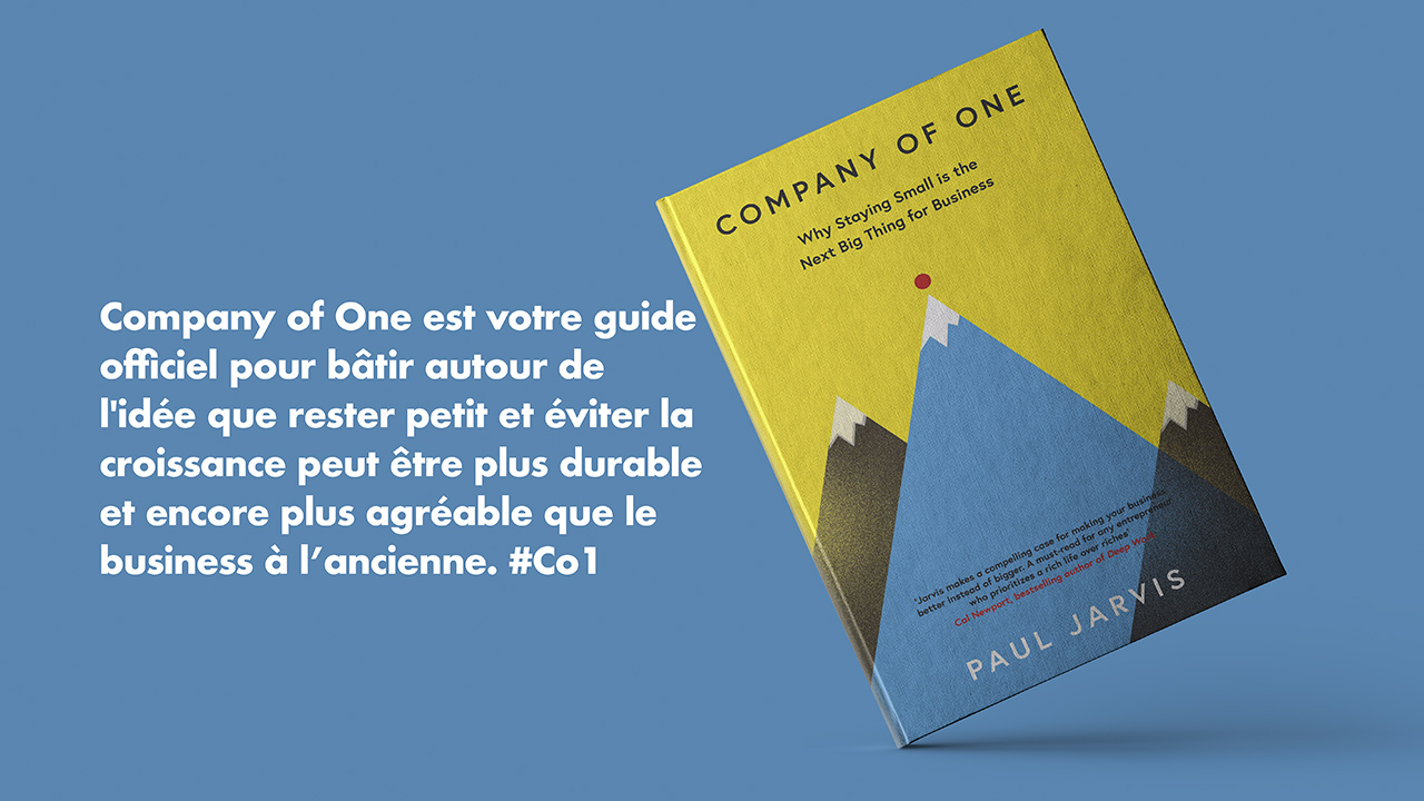 livre-blog-company-of-one